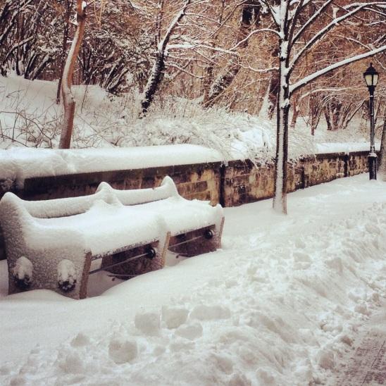 Brooklyn Blizzard photo by Liz Ronk