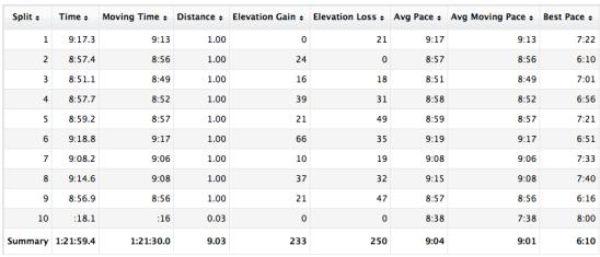 Central Park Run Garmin GPS Tracking